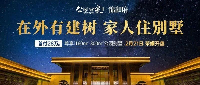 公园世家Ⅱ锦和府2月21日即将开盘,建面约160㎡-300㎡天地院墅,首付28万起!